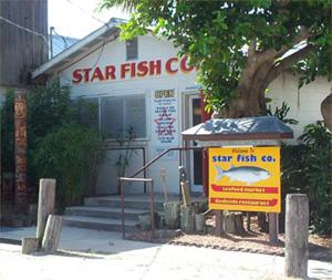 Starfish Company